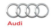 Skup katalizatorów Audi